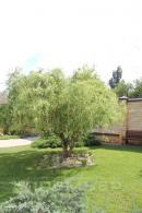 Европейское домовладение с бассейном и садом.